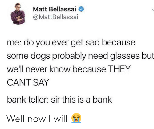 bank teller: Matt Bellassai  @MattBellassai  me: do you ever get sad because  some dogs probably need glasses but  we'll never know because THEY  CANT SAY  bank teller: sir this is a banlk Well now I will 😭