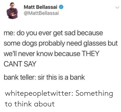 Need Glasses: Matt Bellassai  @MattBellassai  me: do you ever get sad because  some dogs probably need glasses but  we'll never know because THEY  CANT SAY  bank teller: sir this is a bank whitepeopletwitter: Something to think about