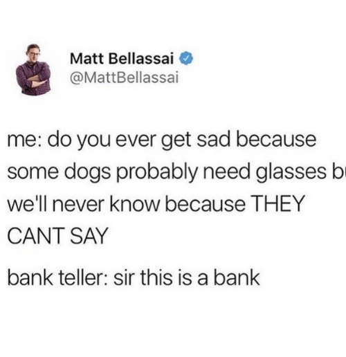 bank teller: Matt Bellassai  @MattBellassai  me: do you ever get sad because  some dogs probably need glasses b  We'll never know becauseT HEY  CANT SAY  bank teller: sir this is a bank