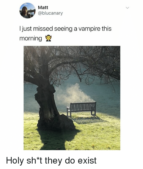 Dank Memes, Vampire, and They: Matt  @blucanary  Ijust missed seeing a vampire this  morning Holy sh*t they do exist