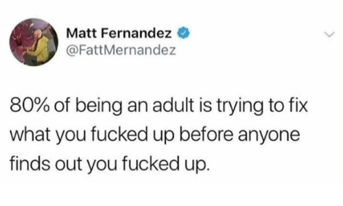 Being an Adult, Dank, and 🤖: Matt Fernandez  @FattMernandez  80% of being an adult is trying to fix  what you fucked up before anyone  finds out you fucked up.