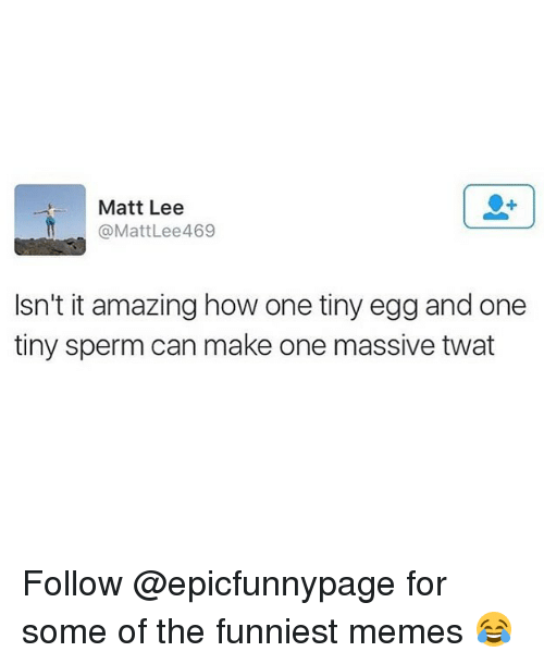 Memes, Amazing, and 🤖: Matt Lee  @MattLee469  Isn't it amazing how one tiny egg and one  tiny sperm can make one massive twat Follow @epicfunnypage for some of the funniest memes 😂