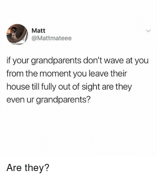 Memes, House, and Out of Sight: Matt  @Mattmateee  if your grandparents don't wave at you  from the moment you leave their  house till fully out of sight are they  even ur grandparents? Are they?