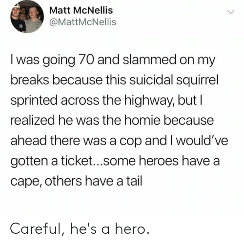 cape: Matt McNellis  @MattMcNellis  I was going 70 and slammed on my  breaks because this suicidal squirrel  sprinted across the highway, but l  realized he was the homie because  ahead there was a cop and I would've  gotten a ticket...some heroes have a  cape, others have a tail Careful, he's a hero.
