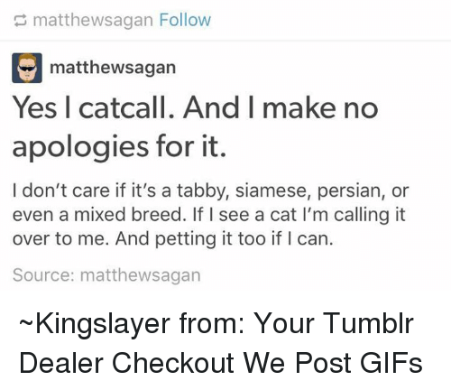 Dank, Persian, and 🤖: matthewsagan Follow  E matthewsagan  Yes I catcall. And I make no  apologies for it.  I don't care if it's a tabby, siamese, persian, or  even a mixed breed. If I see a cat l'm calling it  over to me. And petting it too if l can.  Source: matthewsagan ~Kingslayer from: Your Tumblr Dealer  Checkout We Post GIFs