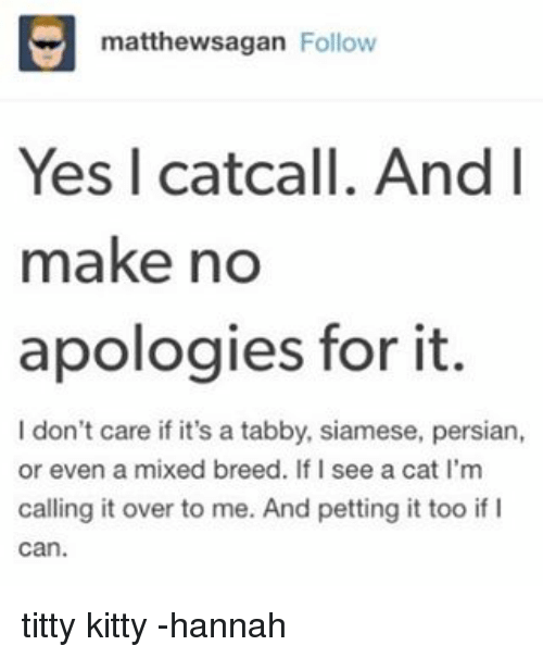 Memes, Titties, and Persian: matthewsagan Follow  Yes I catcall. And I  make no  apologies for it.  l don't care if it's a tabby, siamese, persian,  or even a mixed breed. If I see a cat l'm  calling it over to me. And petting it too if I titty kitty -hannah