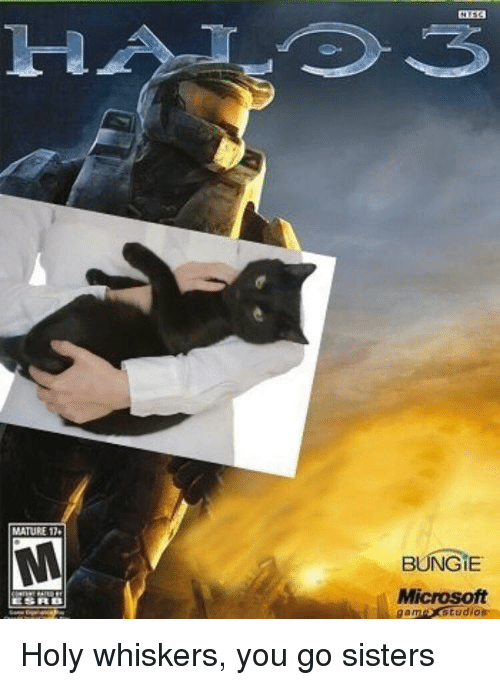 bungie: MATURE 1  BUNGİE  Microsoft  am studios <p>Holy whiskers, you go sisters</p>