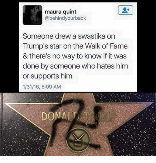 Funny, Tumblr, and Star: maura quint  abehindyourback  Someone drew a swastika on  Trump's star on the Walk of Fame  & there's no way to know if it was  done by someone who hates him  or supports him  1/31/16, 5:09 AM  DONALT