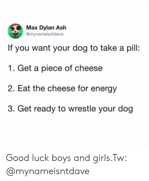 dylan: Max Dylan Ash  @mynameisntdave  If you want your dog to take a pil:  1. Get a piece of cheese  2. Eat the cheese for energy  3. Get ready to wrestle your dog Good luck boys and girls.Tw: @mynameisntdave