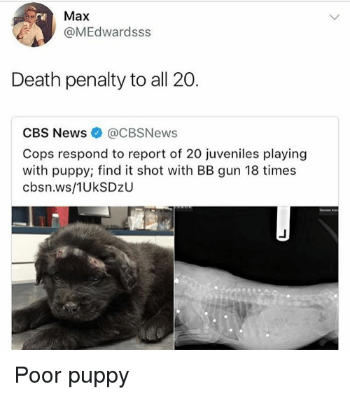 Reportate: Max  @MEdwardsss  Death penalty to all 20.  CBS News@CBSNews  Cops respond to report of 20 juveniles playing  with puppy; find it shot with BB gun 18 times  cbsn.ws/1UkSDzU Poor puppy
