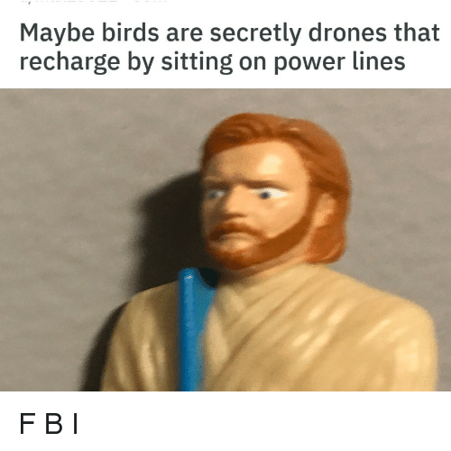 Drones: Maybe birds are secretly drones that  recharge by sitting on power lines F B I