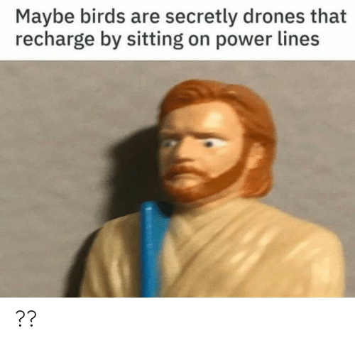 Drones: Maybe birds are secretly drones that  recharge by sitting on power lines ??