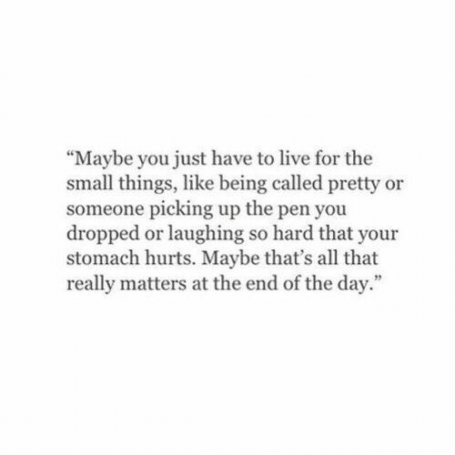 """end of the day: """"Maybe you just have to live for the  small things, like being called pretty or  someone picking up the pen you  dropped or laughing so hard that your  stomach hurts. Maybe that's all that  really matters at the end of the day."""