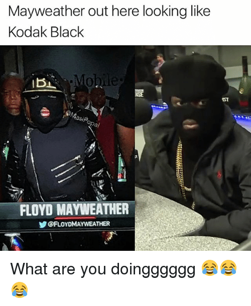 Floyd Mayweather, Funny, and Mayweather: Mayweather out here looking like  Kodak Black  .Mo  IBI  MasiP  FLOYD MAYWEATHER  ゾ@FLOYDMAYWEATHER What are you doingggggg 😂😂😂