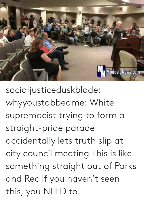 Parade: Mc  ModestoNews.com socialjusticeduskblade: whyyoustabbedme:    White supremacist trying to form a straight-pride parade accidentally lets truth slip at city council meeting   This is like something straight out of Parks and Rec   If you haven't seen this, you NEED to.