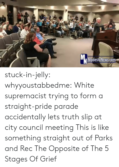 Parade: Mc  ModestoNews.com stuck-in-jelly:  whyyoustabbedme:   White supremacist trying to form a straight-pride parade accidentally lets truth slip at city council meeting   This is like something straight out of Parks and Rec       The Opposite of The 5 Stages Of Grief