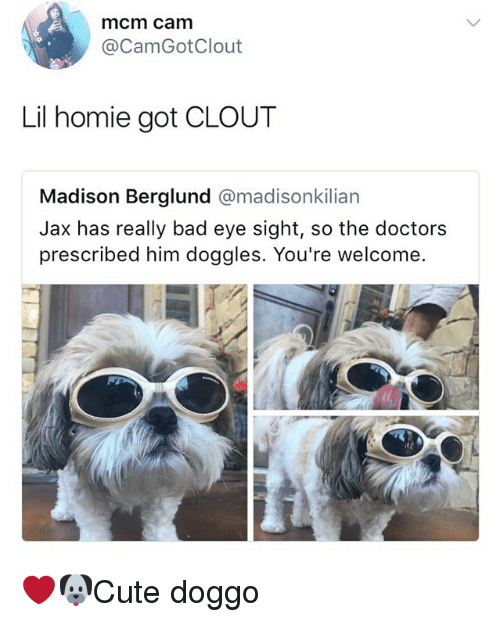 Bad, Homie, and Memes: mcm cam  @CamGotClout  Lil homie got CLOUT  Madison Berglund @madisonkilian  Jax has really bad eye sight, so the doctors  prescribed him doggles. You're welcome. ❤️🐶Cute doggo