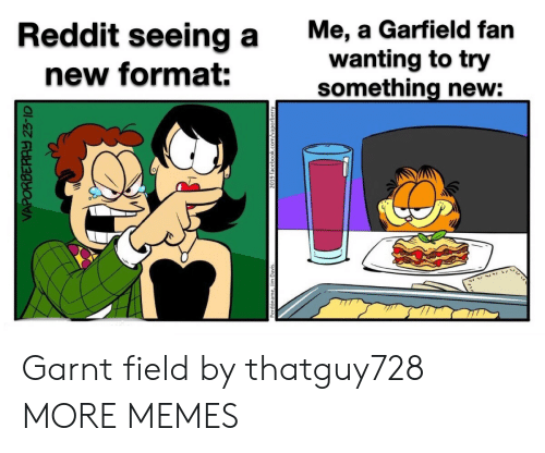 Garfield: Me, a Garfield fan  wanting to try  something new:  Reddit seeing a  new format:  VAPORBERAY 23-10  2019 facebook.com/vaporberry Garnt field by thatguy728 MORE MEMES