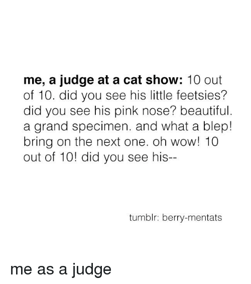 Mentats: me, a judge at a cat show  10 out  of 10. did you see his little feetsies?  did you see his pink nose? beautiful.  a grand specimen. and what a blep!  bring on the next one. oh wow! 10  out of 10! did you see his--  tumblr: berry-mentats me as a judge