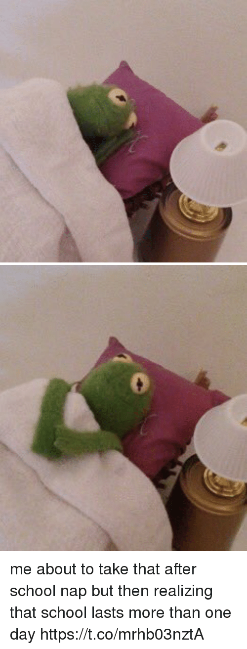 Funny, School, and One: me about to take that after school nap but then realizing that school lasts more than one day https://t.co/mrhb03nztA