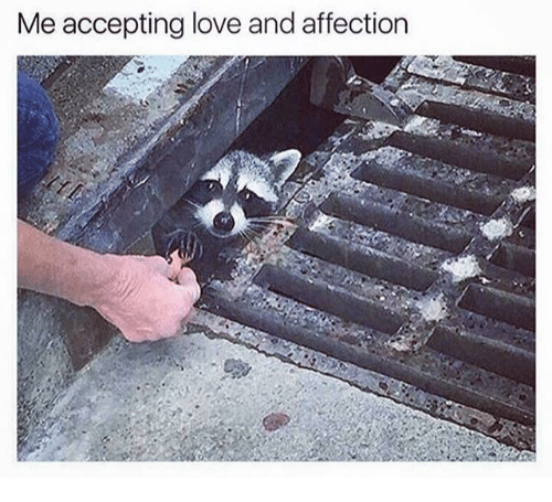 Dank, Love, and Affect: Me accepting love and affection