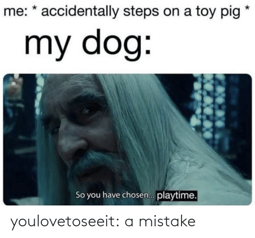 A Mistake: me: * accidentally steps on a toy pig  my dog:  So you have chosen. playtime. youlovetoseeit:  a mistake