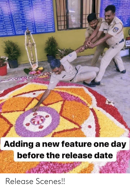 release date: ME  Adding a new feature one day  before the release date Release Scenes!!