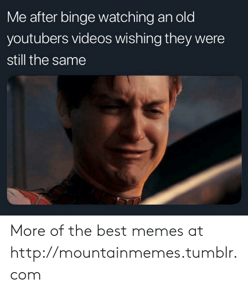 youtubers: Me after binge watching an old  youtubers videos wishing they were  still the same More of the best memes at http://mountainmemes.tumblr.com