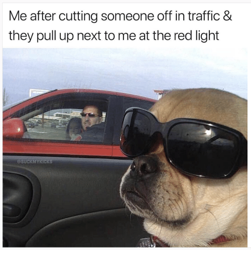 Traffic, Red, and Next: Me after cutting someone off in traffic 8&  they pull up next to me at the red light  @SUCKMYKICKS