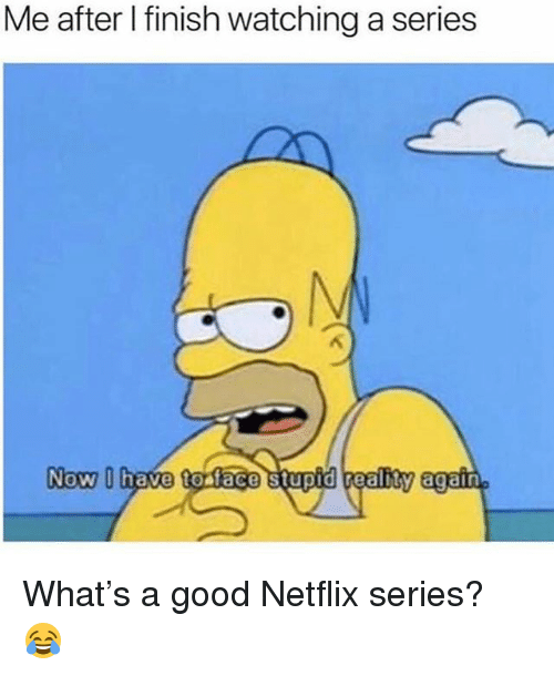 Memes, Netflix, and Good: Me after l finish watching a series  Now U have to face stupid realhty again What's a good Netflix series? 😂