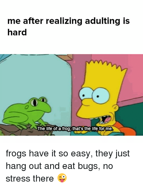 Life, Memes, and 🤖: me after realizing adulting is  hard  0  The life of a frog that's the life for me frogs have it so easy, they just hang out and eat bugs, no stress there 😜