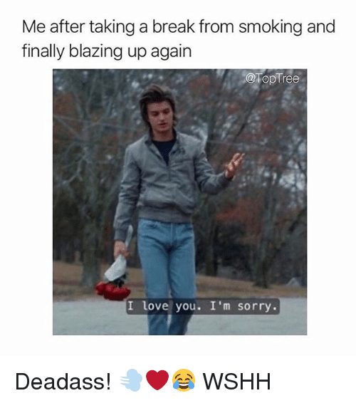 Love, Memes, and Smoking: Me after taking a break from smoking and  finally blazing up again  @TopTree  I love you. I'm sorry. Deadass! 💨❤️😂 WSHH