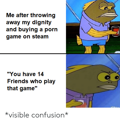 "game on: Me after throwing  away my dignity  and buying a porn  game on steam  ""You have 14  Friends who play  that game"" *visible confusion*"