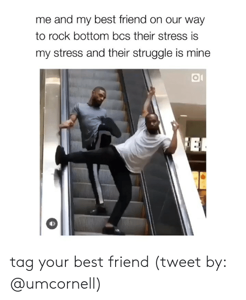 Girl Memes: me and my best friend on our way  to rock bottom bcs their stress is  my stress and their struggle is mine tag your best friend (tweet by: @umcornell)