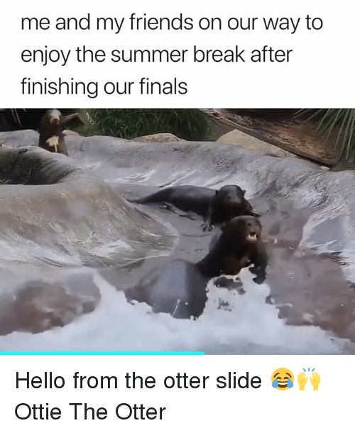 Otter Slide: me and my friends on our way to  enjoy the summer break after  finishing our finals Hello from the otter slide 😂🙌  Ottie The Otter