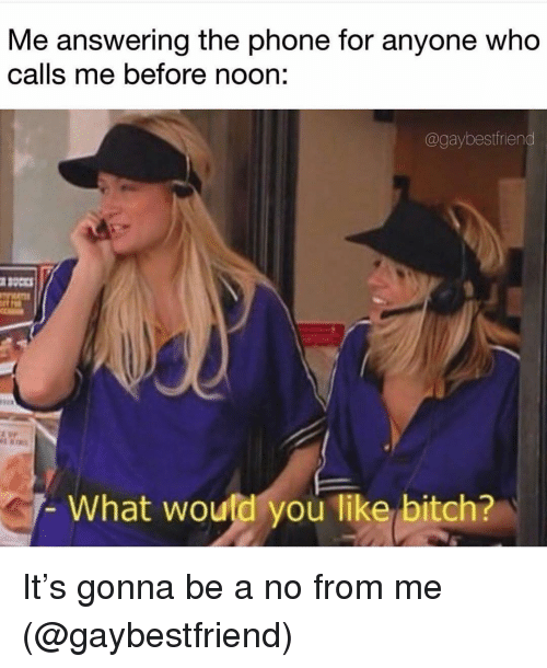 Bitch, Phone, and Girl Memes: Me answering the phone for anyone who  calls me before noon:  @gaybestfriend  What would you like bitch? It's gonna be a no from me (@gaybestfriend)