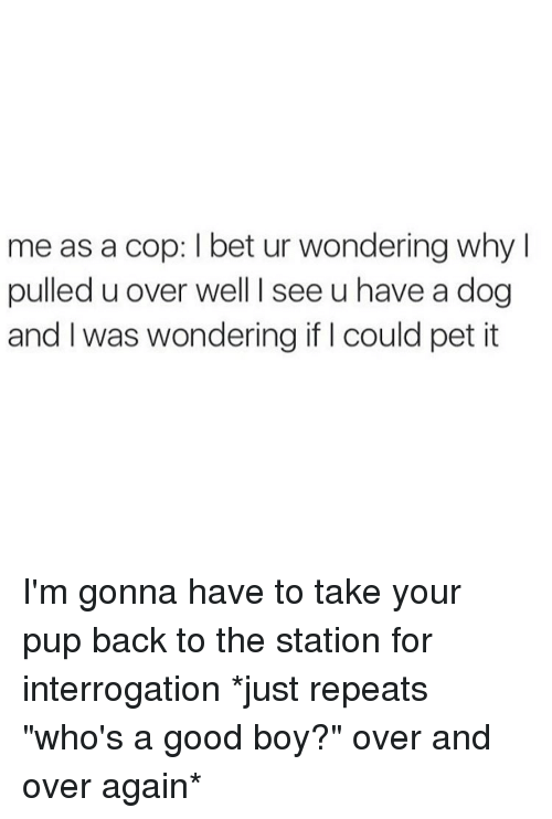 "Girl Memes, Bet, and Cops: me as a cop: l bet ur wondering why I  pulled u over well I see u have a dog  and was wondering if could pet it I'm gonna have to take your pup back to the station for interrogation *just repeats ""who's a good boy?"" over and over again*"