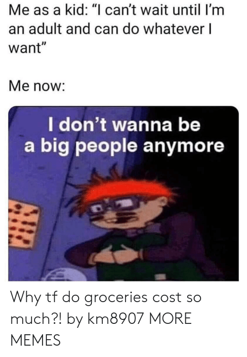 """im an adult: Me as a kid: """"I can't wait until I'm  an adult and can do whatever l  want""""  Me now:  I don't wanna be  a big people anymore Why tf do groceries cost so much?! by km8907 MORE MEMES"""