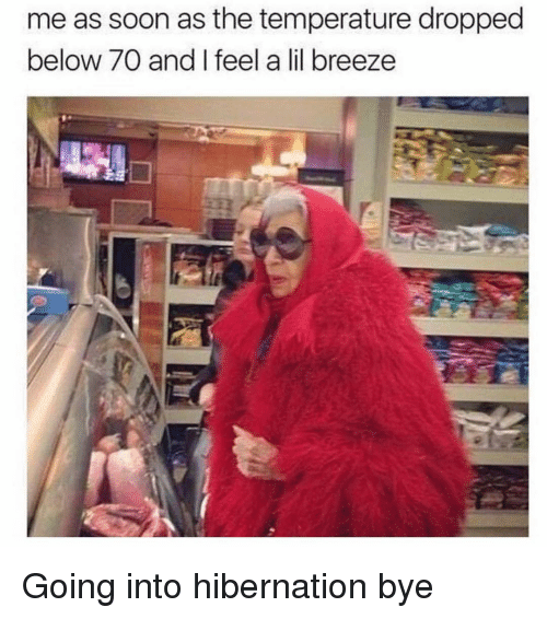 Soon..., Girl Memes, and Below: me as soon as the temperature droppec  below 70 and I feel a lil breeze Going into hibernation bye