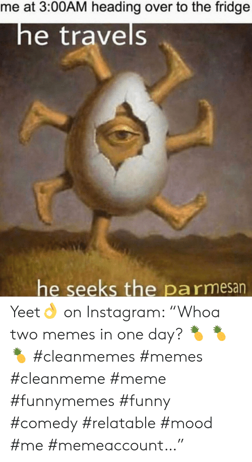 "Cleanmemes: me at 3:00AM heading over to the fridge  he travels  he seeks the pa rmesan Yeet👌 on Instagram: ""Whoa two memes in one day? 🍍 🍍 🍍 #cleanmemes #memes #cleanmeme #meme #funnymemes #funny #comedy #relatable #mood #me #memeaccount…"""