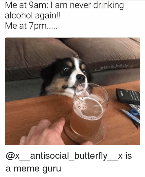 Drinking, Meme, and Alcohol: Me at 9am: am never drinking  alcohol again!!  Me at 7pm... @x__antisocial_butterfly__x is a meme guru