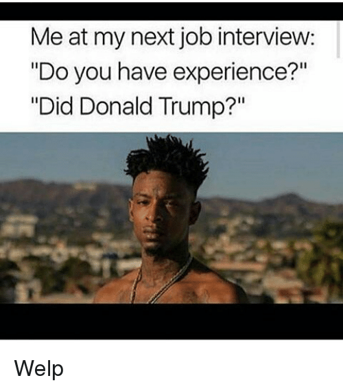 "Donald Trump, Job Interview, and Memes: Me at my next job interview:  ""Do you have experience?""  ""Did Donald Trump?"" Welp"
