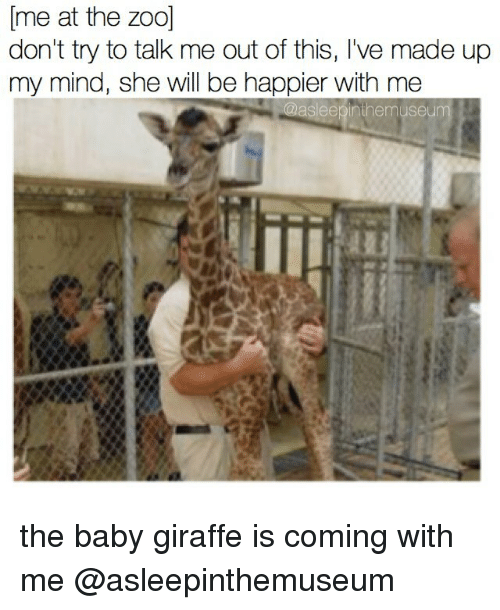 baby giraffe: me at the zoo]  don't try to talk me out of this, I've made up  my mind, she will be happier with me  sleeýinihemuseum the baby giraffe is coming with me @asleepinthemuseum