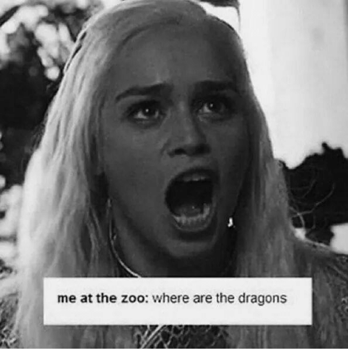 Memes, Dragons, and 🤖: me at the zoo: where are the dragons