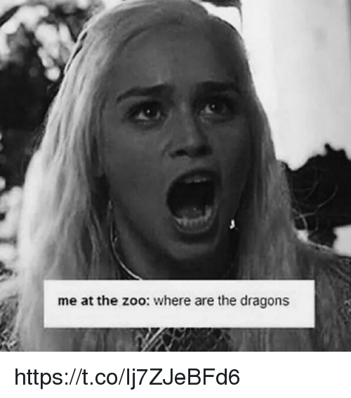Dragons, Zoo, and Where: me at the zoo: where are the dragons https://t.co/Ij7ZJeBFd6