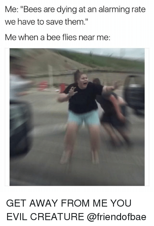 "Funny, Girl Memes, and Alarming: Me: ""Bees are dying at an alarming rate  we have to save them.""  Me when a bee flies near me. GET AWAY FROM ME YOU EVIL CREATURE @friendofbae"