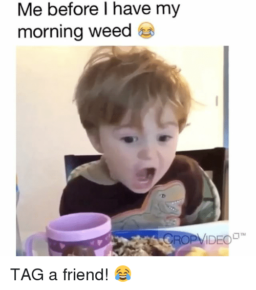 My Mornings: Me before l have my  morning weed  TM  CROP VIDEO TAG a friend! 😂
