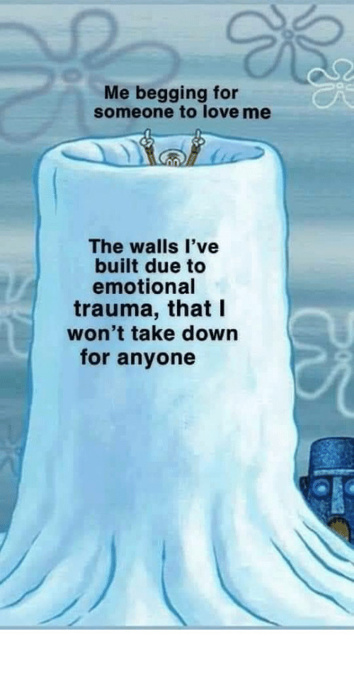 walls: Me begging for  someone to love me  The walls l've  built due to  emotional  trauma, that I  won't take down  for anyone meirl
