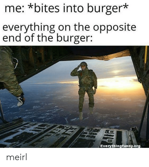 bites: me: *bites into burger*  everything on the opposite  end of the burger:  Everythingfunny.org meirl
