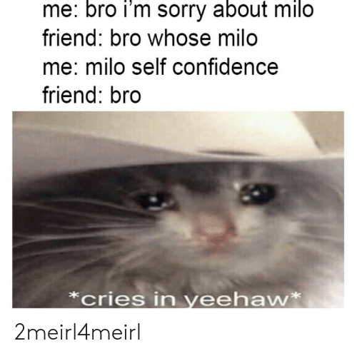 milo: me: bro i'm sorry about milo  friend: bro whose milo  me: milo self confidence  friend: bro  *cries in yeehaw* 2meirl4meirl